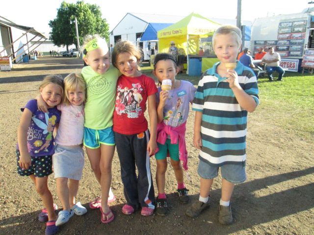Nicollet County Fair